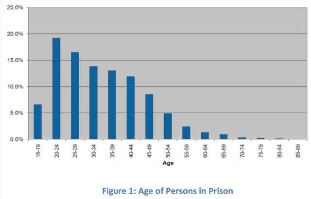 Figure 1 Age of Persons in Prison