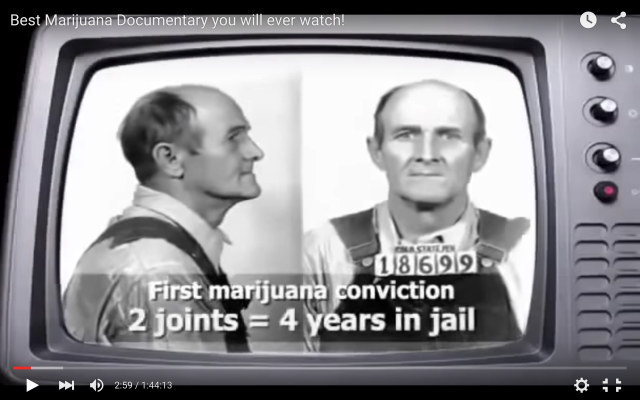 Worlds First Cannabis Convict
